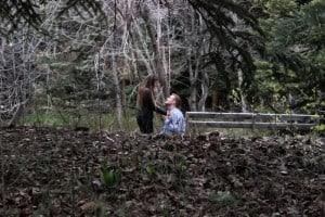 Sundance Resort: The Tree Room