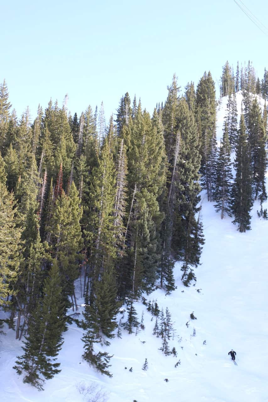 Female Foodie SLC: Snowbird Ski Resort