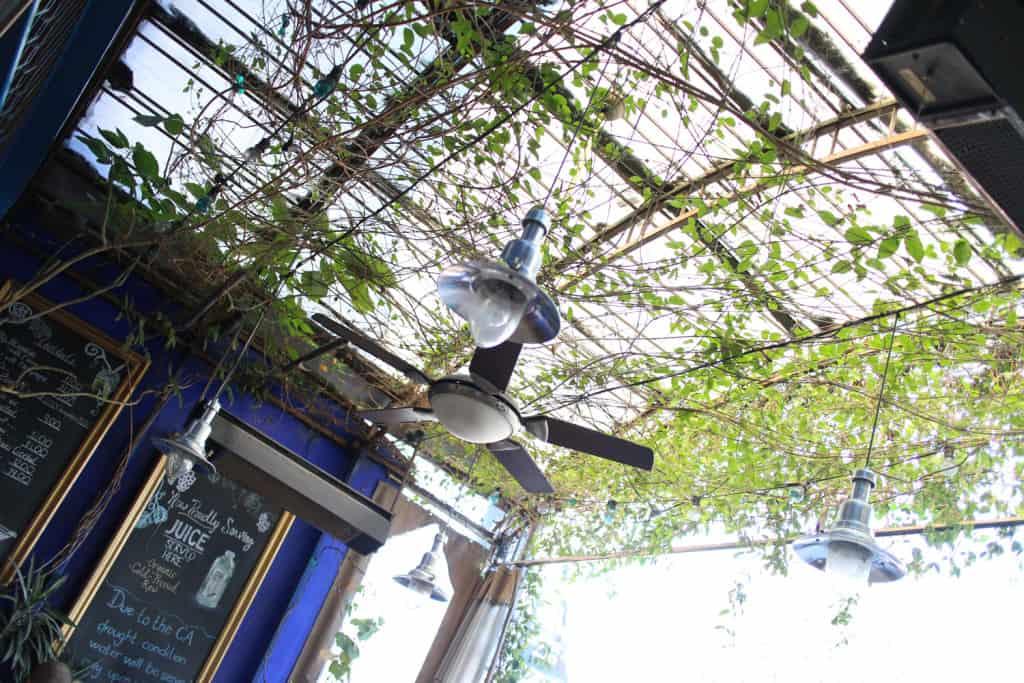 Female Foodie Los Angeles: Little Next Door