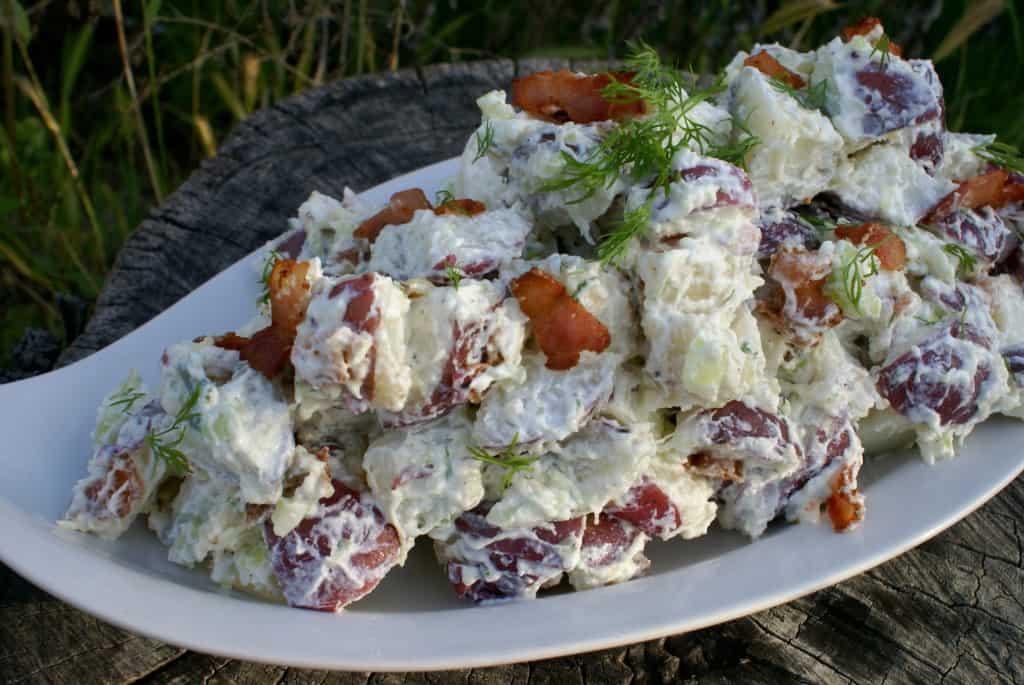 Tzatziki Potato Salad - Female Foodie