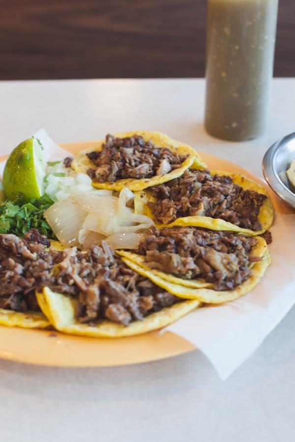 female foodie san antonio - taqueria datapoint