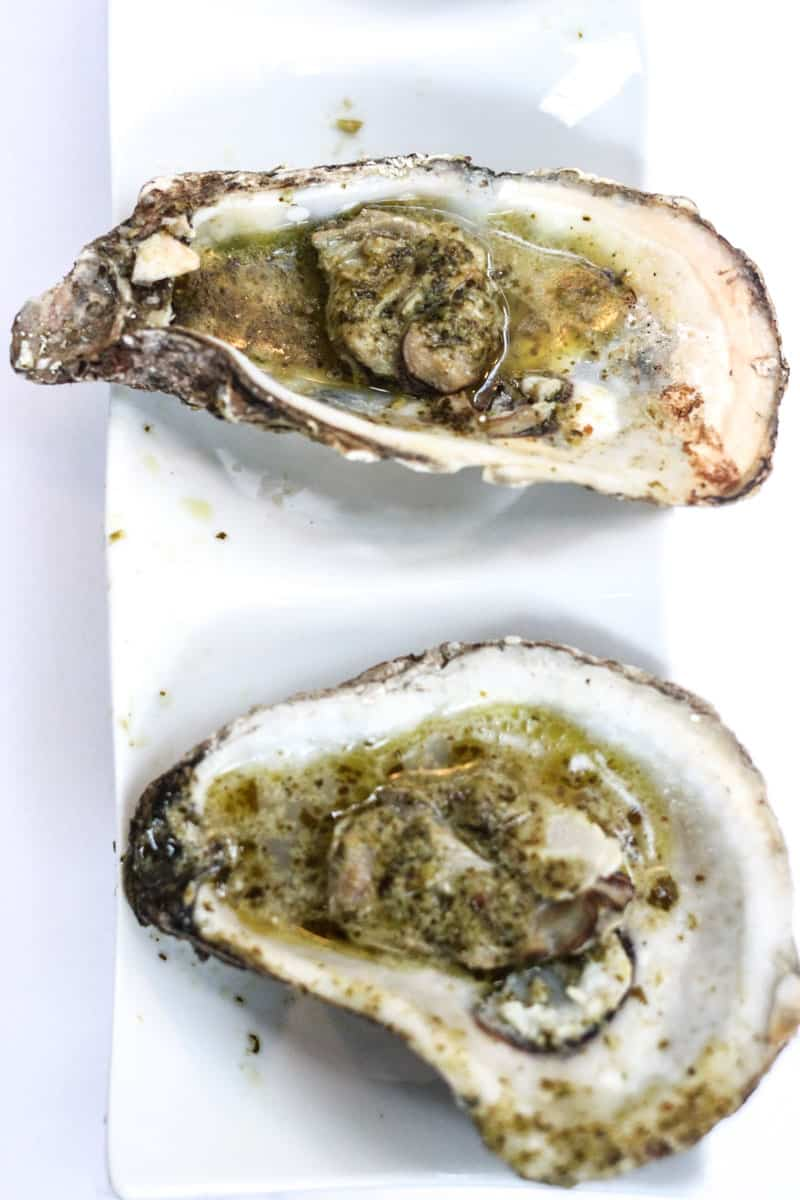current fish oyster female foodie slc
